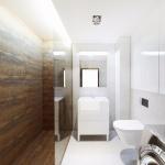 Projekty architekt wnętrz nowoczesny projekt łazienki
